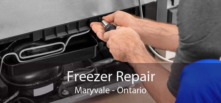 Freezer Repair Maryvale - Ontario