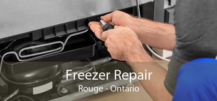 Freezer Repair Rouge - Ontario