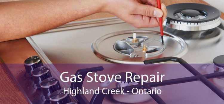 Gas Stove Repair Highland Creek - Ontario