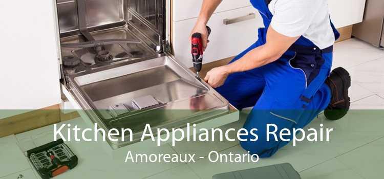 Kitchen Appliances Repair Amoreaux - Ontario