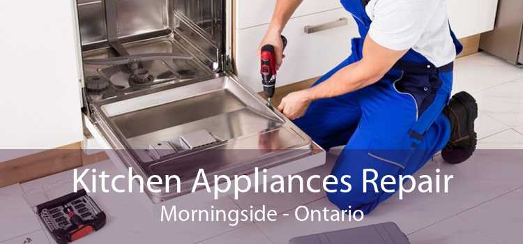 Kitchen Appliances Repair Morningside - Ontario