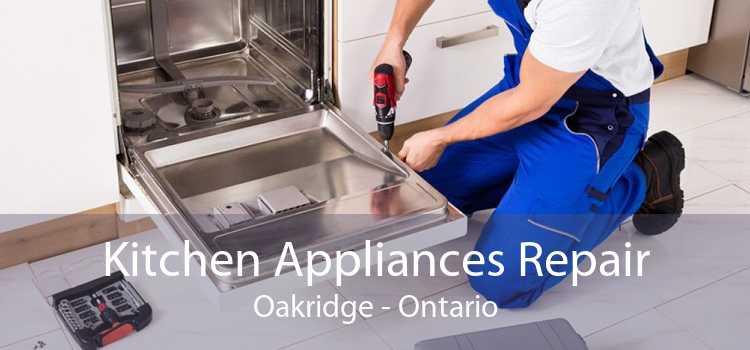 Kitchen Appliances Repair Oakridge - Ontario