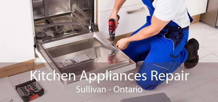 Kitchen Appliances Repair Sullivan - Ontario
