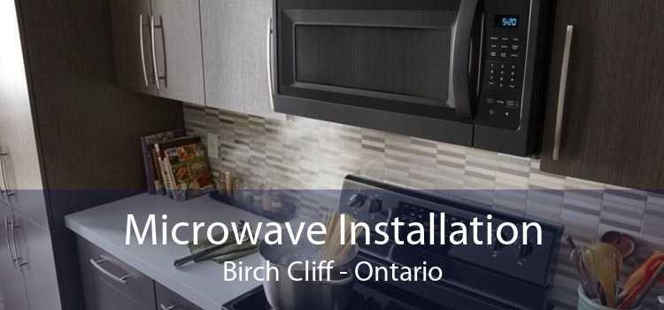 Microwave Installation Birch Cliff - Ontario