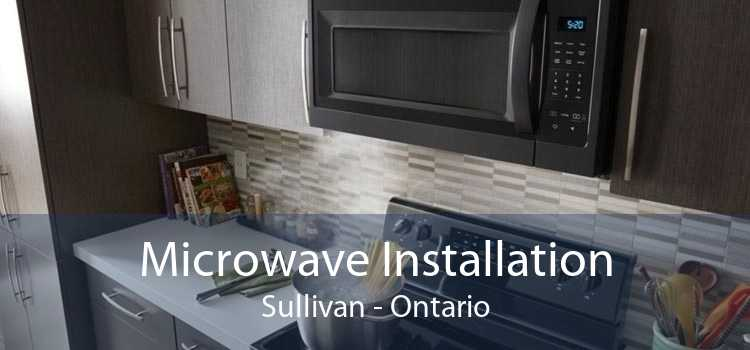 Microwave Installation Sullivan - Ontario
