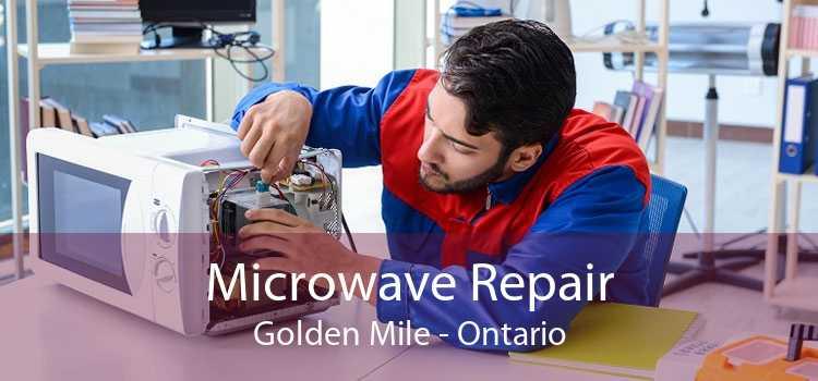 Microwave Repair Golden Mile - Ontario