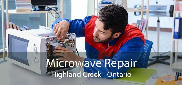 Microwave Repair Highland Creek - Ontario