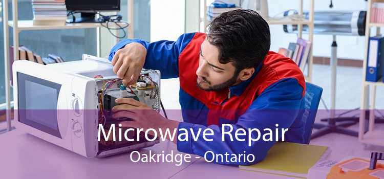Microwave Repair Oakridge - Ontario