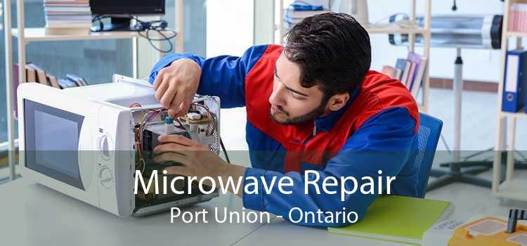 Microwave Repair Port Union - Ontario