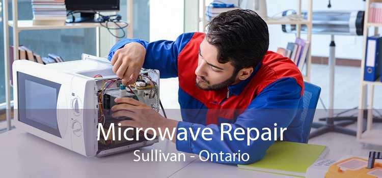 Microwave Repair Sullivan - Ontario