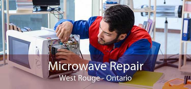 Microwave Repair West Rouge - Ontario